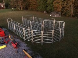 Cattle Sweep Systems